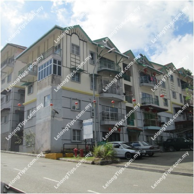 Ground Floor, Block C, Jalan Felicia 3A, Habu Height Felicia, Ringlet, Cameron Highlands, Pahang | Lelongtips.com.my